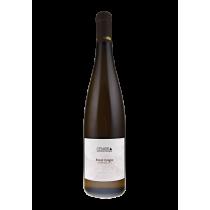 Pinot Grigio Trentino doc Cembra 2019